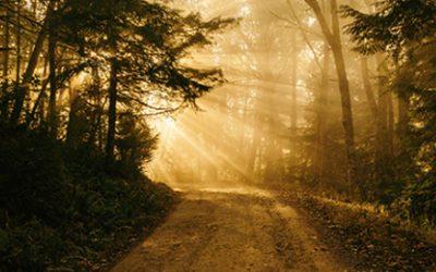 Hiking The Spiritual Path